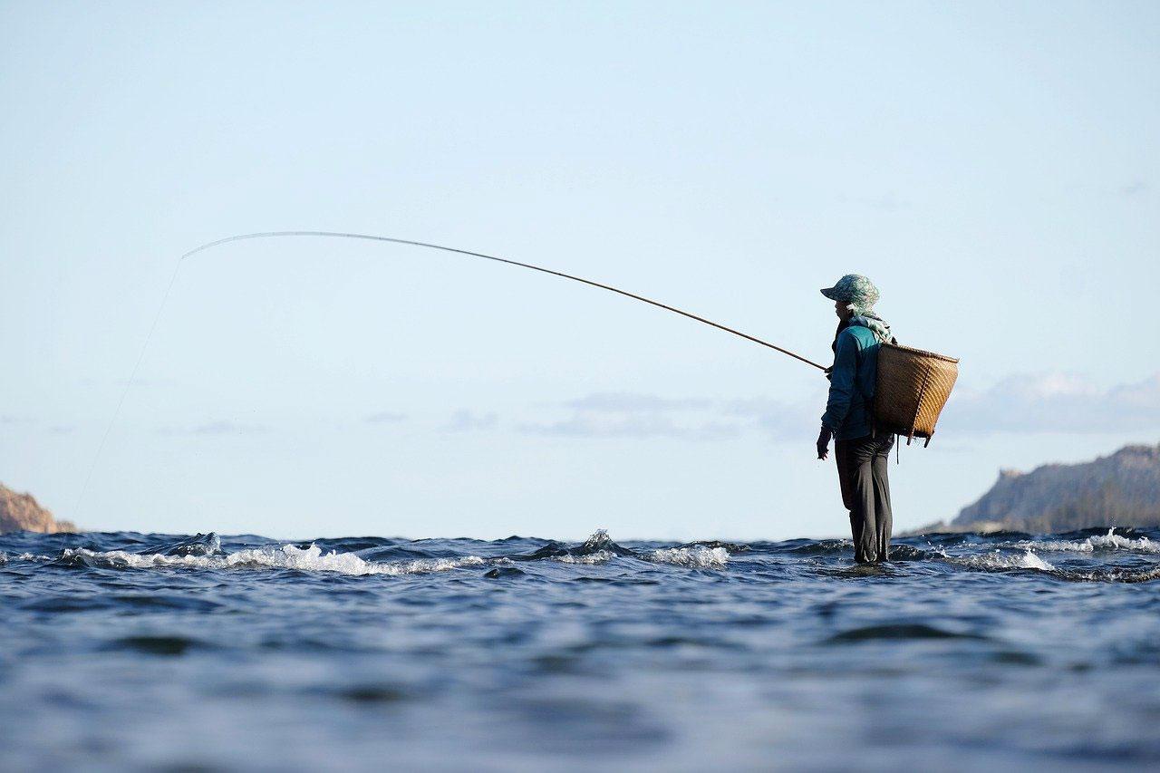 Professionnels pêche en mer en Charente Maritime
